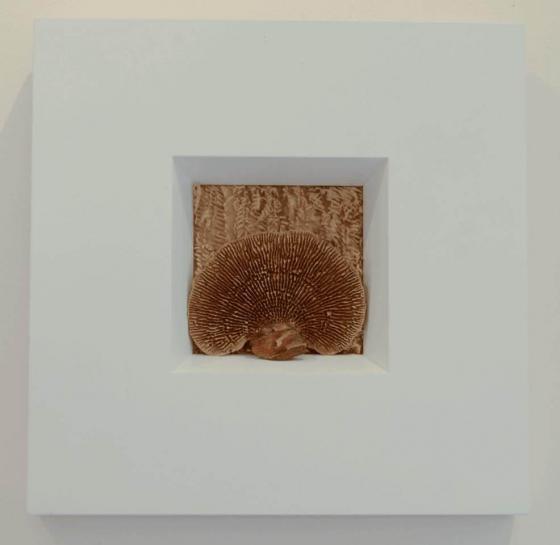 Ursula Traschütz - Objekte, Papierarbeiten- Sprachpilz