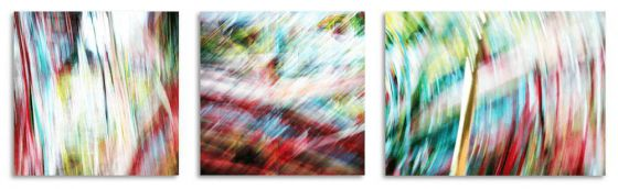 Anna Munktell - Photographie- Between the lines Triptychon