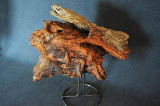 einzigartige Maserung und Holzstruktur 12.04.2021 - 18:39