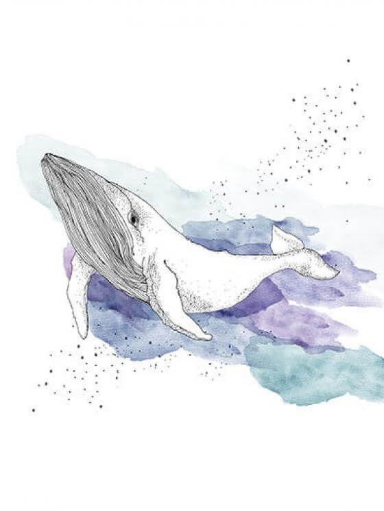 Anika Merten - Graphik, Illustration, Zeichnungen- Wal (limitierter Print)
