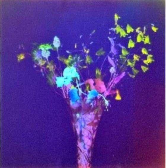 Susanne Pareike - Kleiner Stauß in Kristallvase - Digitale Malerei